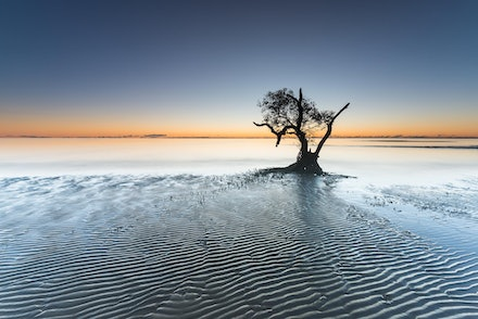 Singularity - Nudgee, QLD. 2012.