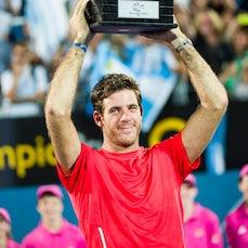 2014 Sydney Finals - Featuring Del Potro, Tomic, Pironkova, Kerber