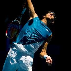2009 Australian Open Day 7 - Featuring del Potro, Cilic, Venus & Serena Williams, Stosur, Petrova, Zvonareva, Roddick & Robredo