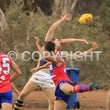 2016 WAFL R7 West Perth v Claremont
