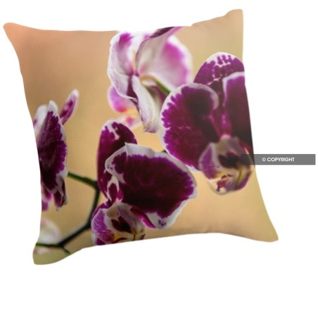 Pink Moth Orchid Cushion
