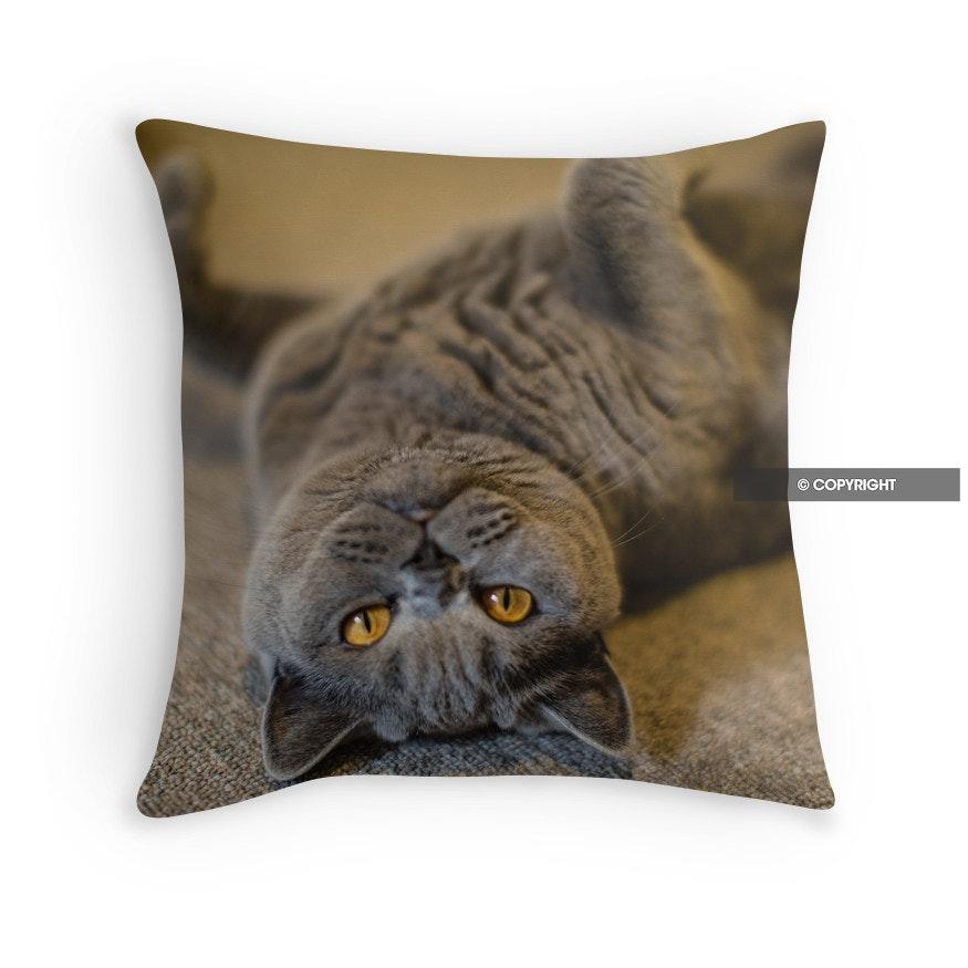 Ruby the British Blue puss cat upside down Cushion