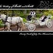 Wedding Album Townsville - The pages from Britt & Scott's wedding book. Ceremony - Queens Gardens, Townsville. Location shots - Townsville. Reception -...
