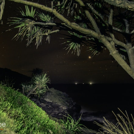 pandanus by night by www.candyscapephotography.com.au (1 of 1)
