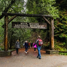 Muir Woods National Monument - An ancient coast redwood forest and redwood creek watershed were protected here by a local businessman and his wife, who...