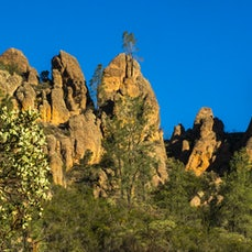Pinnacles National Park - Faults, volcanoes, and erosion create critical habitats for California critters just south of the high-tech communities of Silicon...