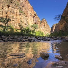 Zion National Park - Colorful canyon and mesa scenery includes erosion and rock fault patterns that create diverse plant and wildlife habitats in southern...