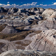 Petrified Forest National Park - The park features petrified logs composed of multi-colored quartz, shortgrass prairie, and Painted Desert landscapes in...