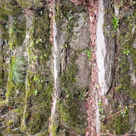 Stone Steps Circa 1100