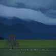 New Zealand - My trip to NZ