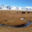Mongolia Autumn 2014
