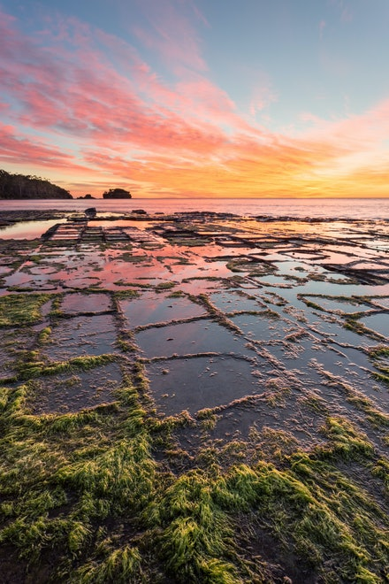 Tessellation - The Tessellated Pavement A natural marvel and geological curiousity.  However you look at it, I feel tremdously lucky to live in a time...