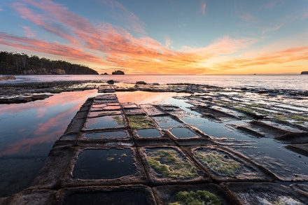 Tessellation III - Tessellated Pavement, Eaglehawk Neck, Tasmania