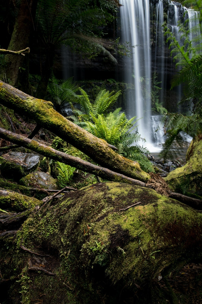 Russel Falls - Mt Field National Park, Tasmania
