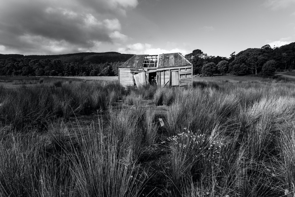 Forgotten - Abandoned shack on Bruny Island, Tasmania