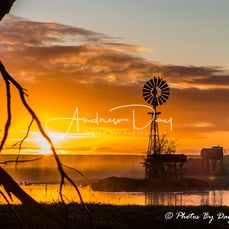 Images Of Gippsland. - *PLEASE NOTE ALL IMAGES IN THIS GALLERY AVAILABLE FOR PURCHASE AS A PRINT ONLY.