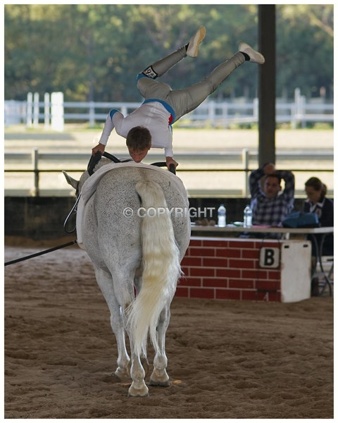 Qld_State-Vaulting_002