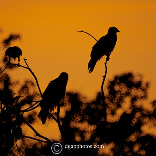 Top End Moments - Darwin, Kakadu, Katherine and Litchfield