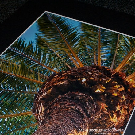 """Matted Print - Image printed on metallic paper with lustre coating that gives the picture a 3D appearance. Print is matted between a 1/8"""" foam core board..."""