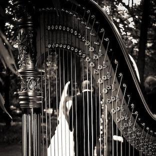 Presley Wedding - Belinda & James Presley