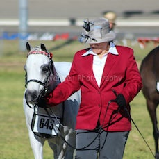 aust saddle pony Country Championships. 24/8/14