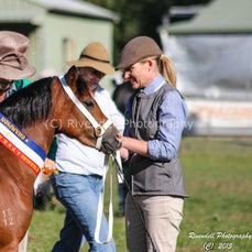 2015 Taralga AP&H Show (Ring Events )