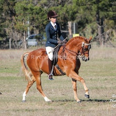 ARABS INC WINTER SHOW 2015 ( RIDDEN)