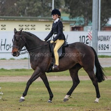 South West Hack Spring Show