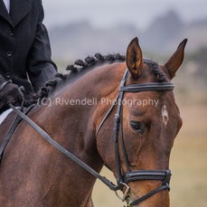 Bungendore Adult Rideing Club Dressage Comp 3/4/2016