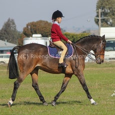 Harden Interschool 2016 (Show Rideing )