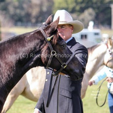 2017 Cootamundra Foal and Young Stock Show ( Foals )