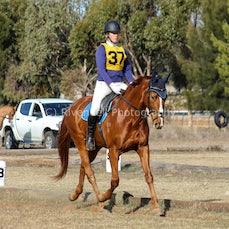 2017  Narrandera Pony Club ODE ( Dressage )