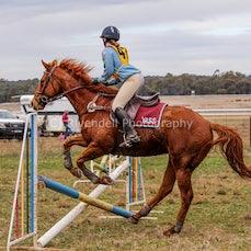 2017  Narrandera Pony Club ODE (Jumping)