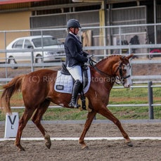 2017 Riverina Dressage Festival (Sat)