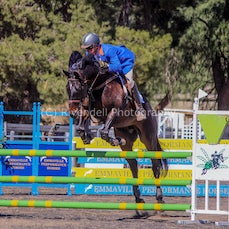 2017 NSW Country Showjumping Championships WAGGA  ( Sat)