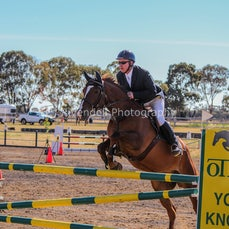 2017 NSW Country Showjumping Championships WAGGA  (Sun) Reece Evans