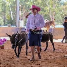 2018 National Donkey & Mule Show