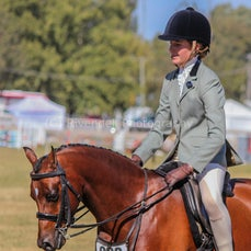 2018 Bathurst Royal,Novice Hu nter Pony ( Fri) Reece Evans Photos