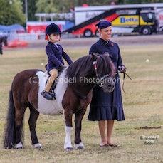 2018 Bathurst Royal, Child Rider, Open Gollaways, Adult Rider. ( Sat)