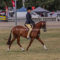 2018 Bathurst Royal, Ridden Rideing Ponys  ( Sun)