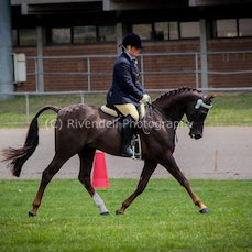 National Captial Horse Show  2013 DAY 1