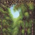 Fern Gully - Oil on Canvas Original size; 24 x 36