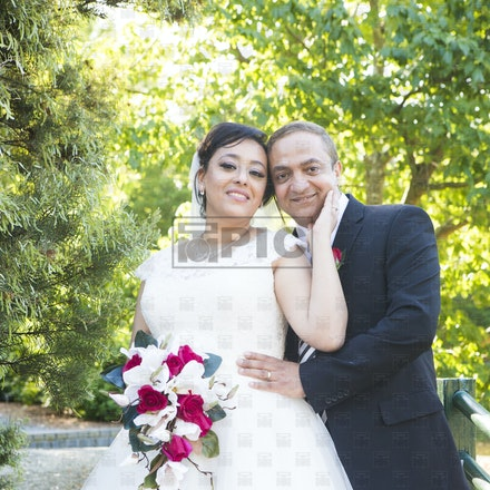 Wedding - Kamal and Venes