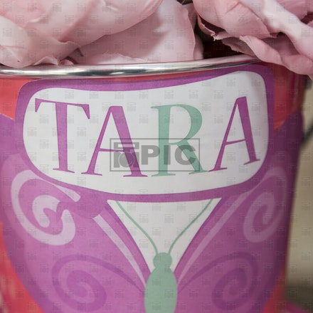 Baby Shower- Tara Hanna