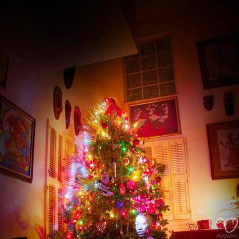 Christmas Tree Portrait - Like the lights on a Christmas Tree, never let anyone dull your shine.