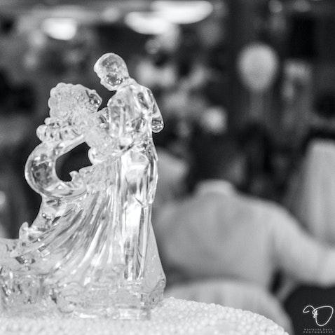 Shay Martin Wedding IV - Reception 2