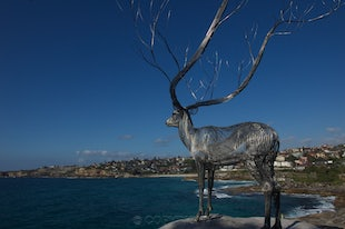 Art - Sculptures by the Sea - The Quintessential Sydney Moment