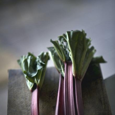 20101003_8947 rhubarb raw