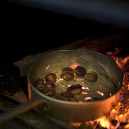 20101003_9202 chestnuts roast