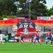 Wanderers Draw with Jets - Western Sydney Wanderers played their second draw in a row against Newcastle Jets last night.  After going one up through a...